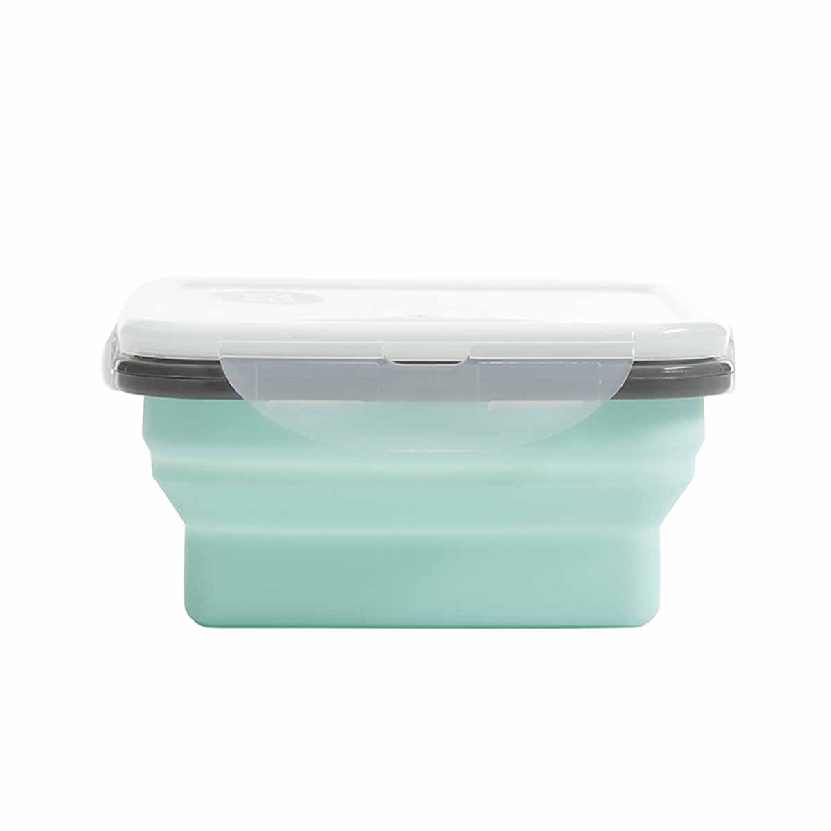 """5"""" Silicone Portion Control Container"""