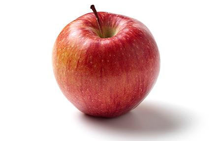 Can My Dog Eat Apple Peels