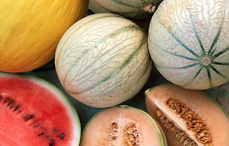 Image result for watermelon muskmelons