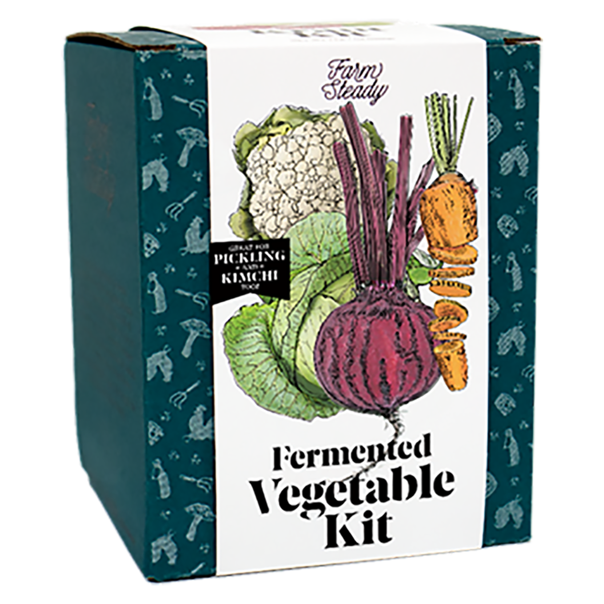 Front view of Farm Steady Fermented Vegetable Kit box. Great for pickling and kimchi too.
